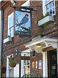 TQ0487 : The Falcon, Denham by Andrew Curtis