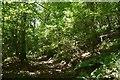 SO3077 : Hobarris Wood by Richard Webb