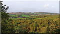 SO8282 : Woodland and fields near Kinver in Staffordshire by Roger  Kidd