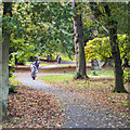 J5080 : Castle Park, Bangor by Rossographer