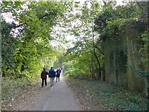 SU4726 : Remains of railway bridge crossing the old road, now a footpath by Rob Purvis