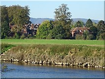 SO8442 : Severn End viewed across the River Severn by Philip Halling