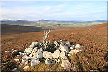NJ3636 : View from the southern slopes of The Scalp by Alan Hodgson