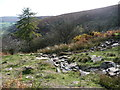 SO2628 : Two streams at the head of Nant y Carnau by Christine Johnstone