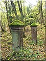 SK1888 : Gateposts to a lost vicarage by Graham Hogg