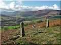 SK1686 : Old stone gateposts above The Vale of Edale by Neil Theasby