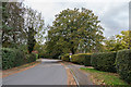 TQ2858 : Bouverie Road by Ian Capper