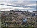 NJ0047 : Blackpark Wood by valenta