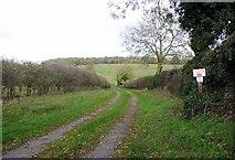 TG2403 : Private bridleway on High Ash Farm by Evelyn Simak