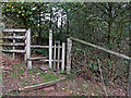 SO8681 : Woodland footpath and stile east off Caunsall by Roger  Kidd