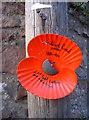 ST5470 : A specific poppy memorial by Neil Owen