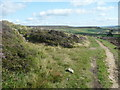 SE0029 : Path junction on the Calderdale Way, Wadsworth by Humphrey Bolton