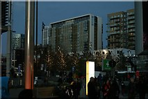 TQ1985 : View of trees lit up with white lights on Olympic Way by Robert Lamb
