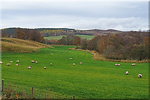 NJ0225 : Fields beside the Speyside Way by Anne Burgess