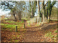 SU9781 : Muddy Lane (track) by Des Blenkinsopp