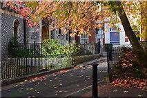 SU3521 : Autumnal Romsey by David Martin