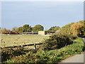 TG1606 : Meadowbrook Farm from Braymeadow Lane by Adrian S Pye