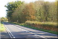 TM3559 : A12 along the north side of Glemham Park by Christopher Hilton