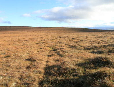 NJ1227 : An almost featureless scene on the Hills of Cromdale by Alan Hodgson