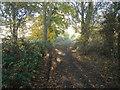 TM0432 : Monk's Lane by Paul Franks