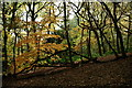 TQ2686 : Hampstead Heath by Peter Trimming