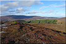 NJ1825 : Looking North from Cairn Daimh by Anne Burgess