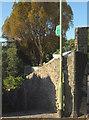 SX9263 : Footpath, Meadfoot Lane, Torquay by Derek Harper