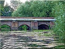 SK5907 : Thurcaston Old Bridge in Leicester by Roger  Kidd