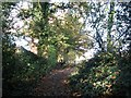 TG3309 : Public footpath past the Blofield recreation ground by Evelyn Simak