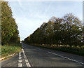 TL8329 : A1124 Colchester Road, Greenstead Green by Geographer