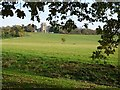SO8845 : Croome D'Abitot church and Croome Park by Philip Halling