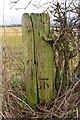 SE3290 : Benchmark on wooden gatepost on NE side of Potter Lane by Roger Templeman