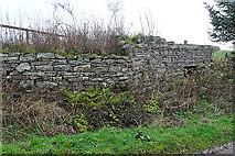 NJ2029 : Old Limekiln by Anne Burgess