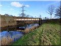 NS4467 : Selvieland Farm access bridge by Thomas Nugent