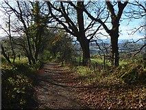 NS4175 : Overtoun House Circular Path by Lairich Rig
