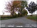 TL8826 : Oak Road, Swan Street, Chappel by Adrian Cable