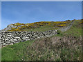 SX6937 : Dry stone wall from coast path by Hugh Venables