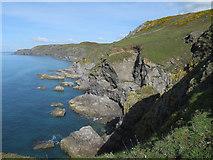 SX6937 : Stannings Rocks, south Devon coast by Hugh Venables
