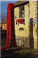 SP4309 : Poppies at Eynsham by Stephen McKay