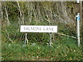 TL8823 : Salmons Lane sign by Adrian Cable