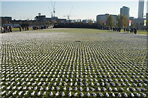 TQ3783 : View across Shrouds of the Somme from the perimeter path of the South Lawn by Robert Lamb