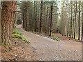 NH6343 : New road up Dunain Hill by valenta