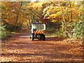 SU9584 : Burnham Beeches ranger on quad bike on autumn leaves by David Hawgood