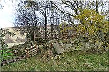 NJ2034 : Ferichdhu Croft by Anne Burgess