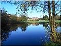 TL8294 : Lynford Lakes reflection by David Pashley