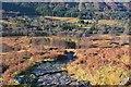 NN1371 : Path from Glen Nevis by Jim Barton
