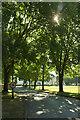 TQ3339 : Entrance drive, Copthorne Hotel Effingham Park by Derek Harper