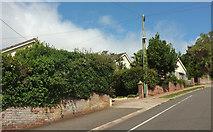 SX8760 : Houses on Highfield Crescent, Paignton by Derek Harper