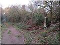 SJ2484 : Thurstaston Recreation Ground Boundary Stone #2 by John S Turner