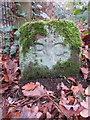SJ2484 : A Birkenhead Glegg boundary stone by Thurstaston Dawpool School by John S Turner
